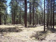2a Coconino Forest Rd. 137a Happy Jack AZ, 86024