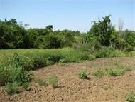 Lot 22 Nw 460 Road Kingsville MO, 64061