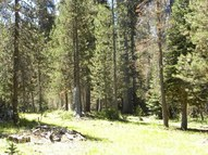 20 Ac Grizzly Rd Bass Lake CA, 93604