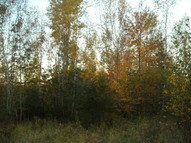 Lot 1 Bluff Dr Pittsville WI, 54466