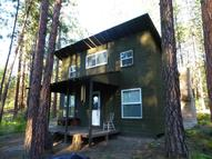 1603 Rickey Point Rd Kettle Falls WA, 99141