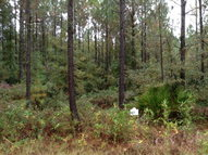 Lot 22  James Lane Waverly GA, 31565