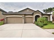 1008 Oakcrest Drive Brandon FL, 33510