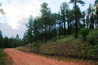 Lot 116 Valley Road Angel Fire NM, 87710