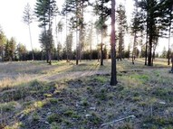 Beach Drive Lot 5 Libby MT, 59923