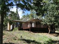 8127 Centaur Drive Evergreen CO, 80439