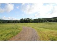 Holt Forge (West 20 Acres) Road Altus AR, 72821