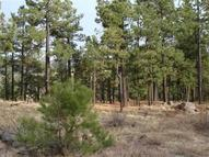 Lot 4 Acr N1072 Greer AZ, 85927