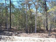 0 Cannon Place Road B-1 Gilbert SC, 29054