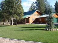 217 Dunham Ct. Seeley Lake MT, 59868