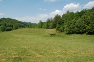 2112 Rafter Rd Tellico Plains TN, 37385