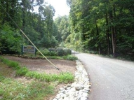 203 Dreugh Evins And High Meadow Drive Pickens SC, 29671