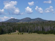 Nhn Forest Service Road 175 Basin MT, 59631