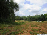 0 Co Rd 5 96.6 Ac Ashland AL, 36251