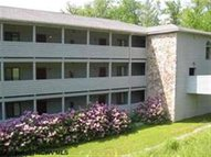 110 Beaver Ridge Condominuims Davis WV, 26260