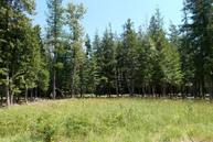 Lot 2 Morris Road Bonners Ferry ID, 83805