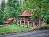31 Mountain Springs Lane Candler NC, 28715