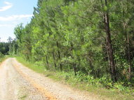 Lot 8 Juliette Road 8 Juliette GA, 31046
