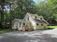 114 Basswood Dr Lords Valley PA, 18428