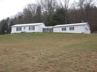 568 Red Rock Rd Wysox PA, 18854