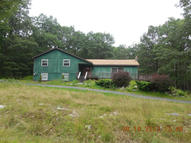 36 Oak Tree Lane Bushkill PA, 18324