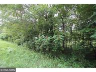 Lot 1 Alden Woods 45th Ave Star Prairie WI, 54026