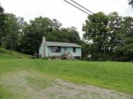 1691 State Highway 220 Mc Donough NY, 13801