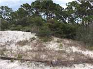 321 Bent Tree Rd Cape San Blas FL, 32456