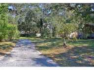 423 New York Avenue Dunedin FL, 34698