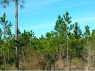 00 Highway Cr 233 Lawtey FL, 32058