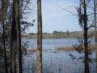 8002 Holly Island Dr (Lot 2037) Donalsonville GA, 39845