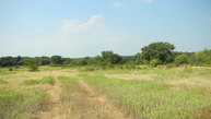 46.79 Acres Reeves Road Pottsboro TX, 75076
