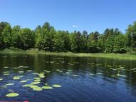 2732 Quiet Cove Rd Tomahawk WI, 54487