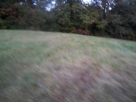Lot Hwy 144 East Cloverport KY, 40111