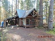 94 North Woods Cabin Cougar WA, 98616