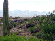 14201 N Honey Bee Trail #22 Oro Valley AZ, 85755