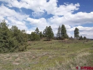 1386 Harvard Avenue Pagosa Springs CO, 81147