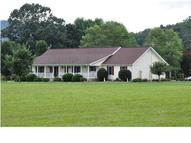 360 County Rd 98 Bridgeport AL, 35740