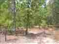 Lot 14 Country Lane Hartsville SC, 29550