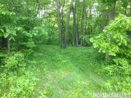 Lot 47  163rd Ave Balsam Lake WI, 54810