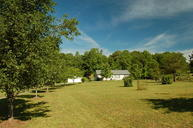 15825 Coulterville Rd Sale Creek TN, 37373