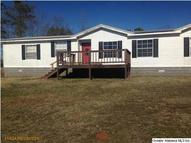 30 Co Rd 49 Wadley AL, 36276