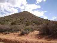 Bogles Ranch Rd Wikieup AZ, 85360