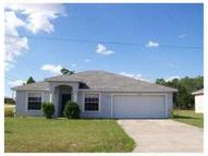 1602 Redfin Dr Kissimmee FL, 34759