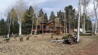 235 Vagabond Creek Terrace Lake George CO, 80827
