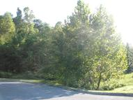 Stone Ridge Drive Lot 13 Andersonville TN, 37705