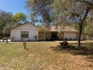 31351 Soaring Hawk Lane Sorrento FL, 32776