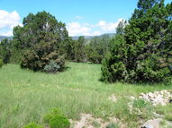 L1 Reynold Dr Ruidoso Downs NM, 88346