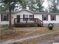 541 Green Shadows Ln Palmyra VA, 22963