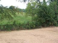 85-Lot Ten Mile Dr Crittenden KY, 41030